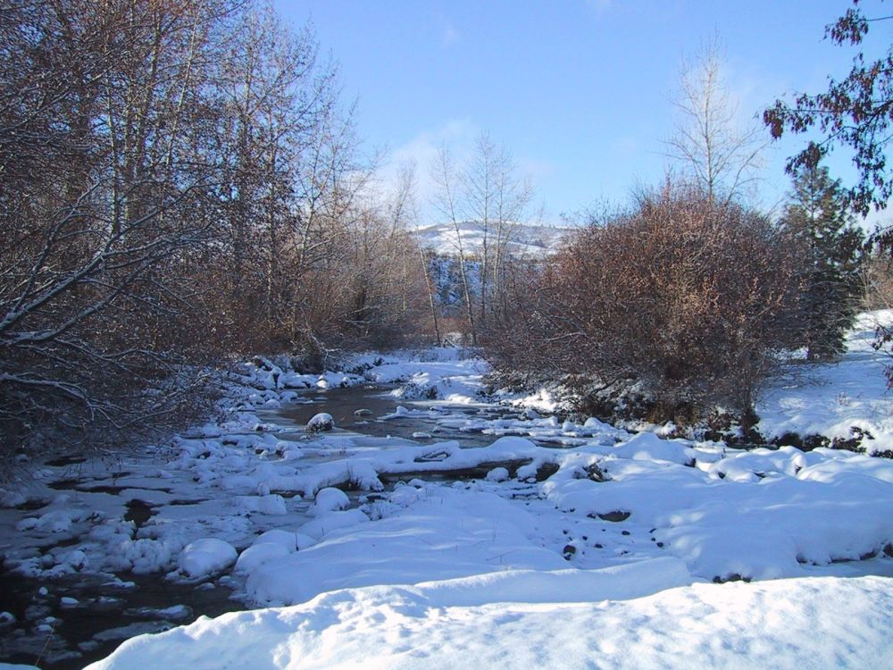 Creek Covered by Ice and Snow in Winter