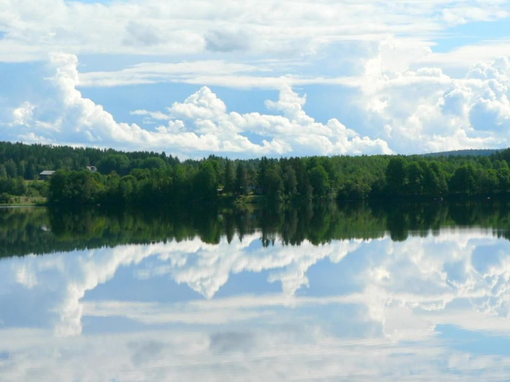 Forest Sky Mirror Lake