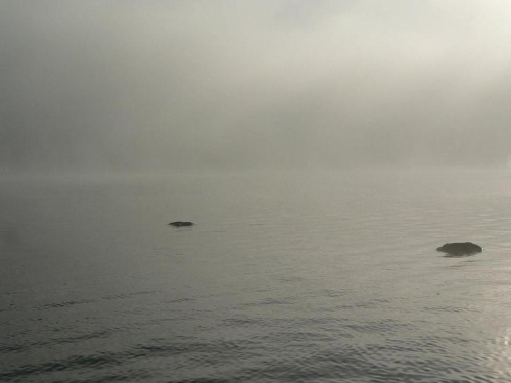 Lake Rocks in Morning Mist