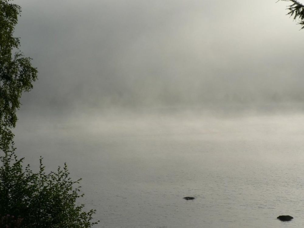 Morning Mist on Lake